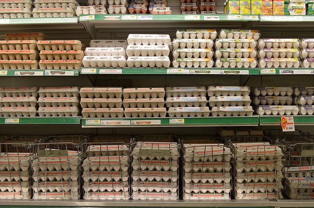 Eggs on a shelf