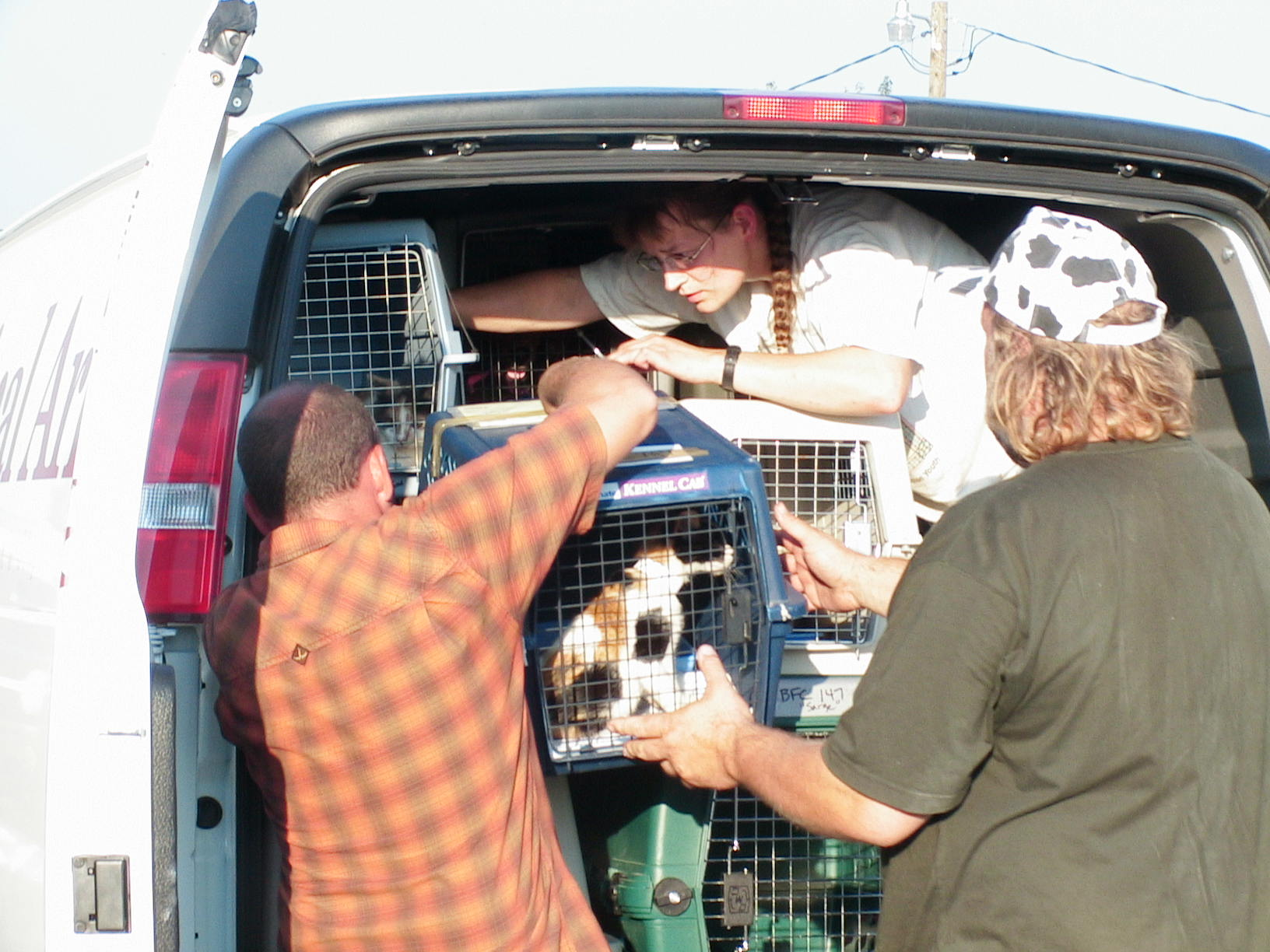 A van load of pets gets to safety.