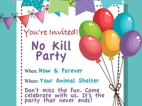 Traditional Animal Shelters: You're Invited to the Party!