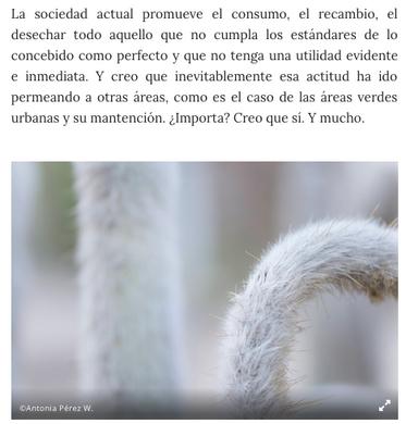 Captura de pantalla 2019-05-06 a la(s) 8