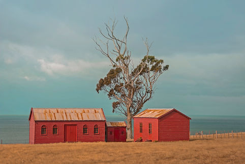 Red sheds by Paula