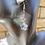 Thumbnail: Diamond Light Star Earrings