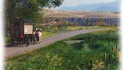 camptown-harness-wagon-4.jpg