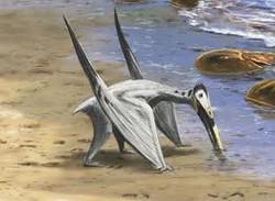 pterosaures