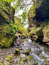 Nauthusagil Iceland