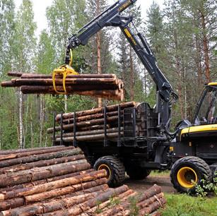 L'industrie forestière considérée comme un secteur essentiel