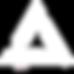 Triversifikation_Logo_Dreieck_white.png