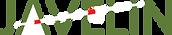 Javelin Medical, Vine™ filter, stroke prevention, Medical Device, clinical trials, Ofer Yodfat, Guy Shinar, Avi Neta
