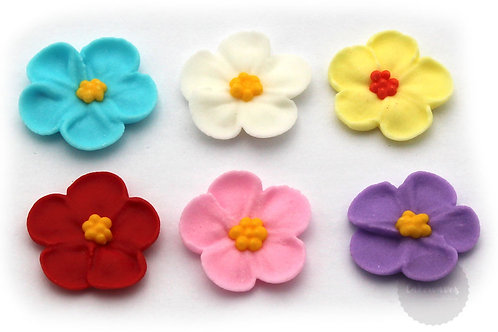 5 Petal Assorted Flowers 6pc - Large