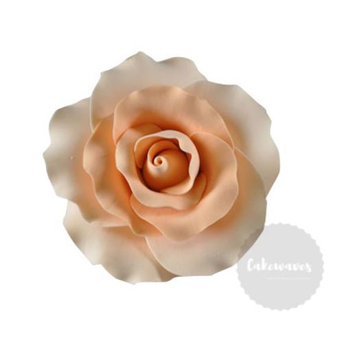 Peach Rose Edible Sugar Flower 8cm