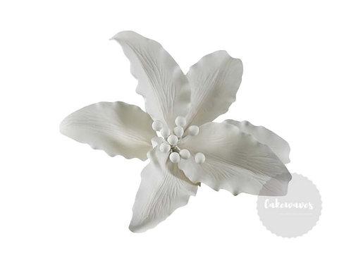 Single Lily Large White Edible Sugar Flower 11cm