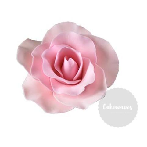 Pink Rose Edible Sugar Flower Large 8cm