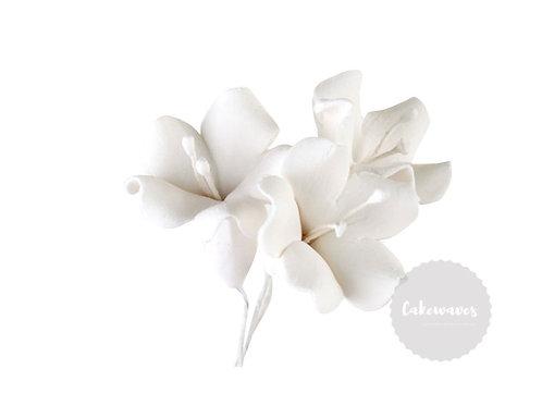 Single Bell Flower White 3cm
