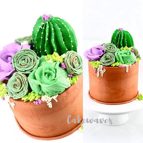 Garden Pot Catcus Cake