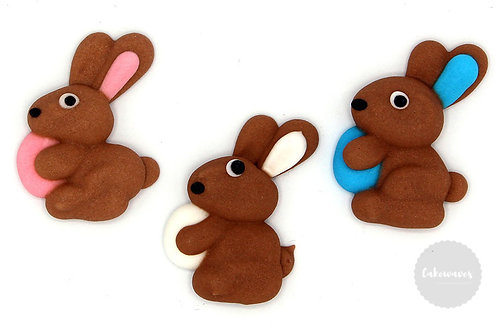 Easter Bunny with Egg Royal Icing Decals 6pc