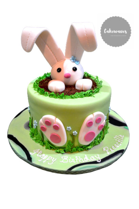 Bunny In Mud Birthday Cake