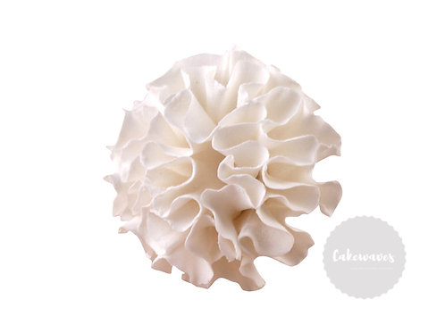 Carnation White 5cm Edible Sugar Flower