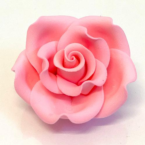 Clasic Rose Extra Large - Pink