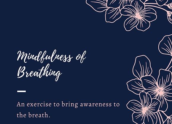Mindfulness of Breathing Exercise