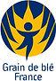 Grain de Blé France.jpg