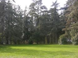 ricevimenti-parco