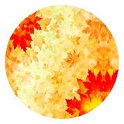 Leaf round.jpg