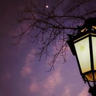 Light_Pole_1a.jpg