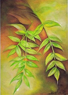 leaf-spring.jpg