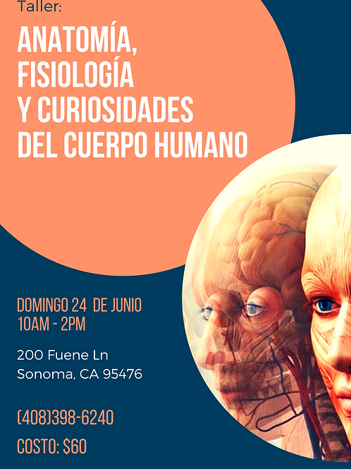 Taller: Anatomía, Fisiología y Curiosidades del Cuerpo Humano
