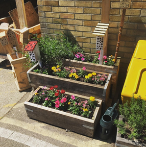 The Wood Store Brighton. Planters and pollinator homes. Sustainability, green news and events in Brighton & Hove