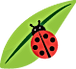 coccinelle.png