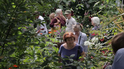 NGS garden open day