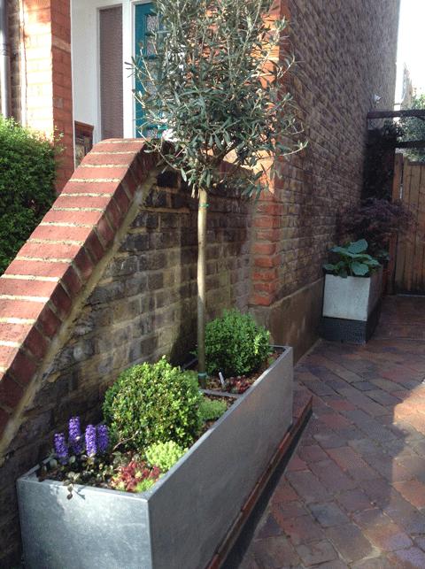 Box planter in the sun
