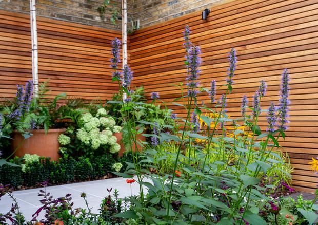 city-garden-acton-lane-mian-bed-to-ri