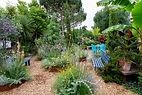 Garden view with corten steel beds