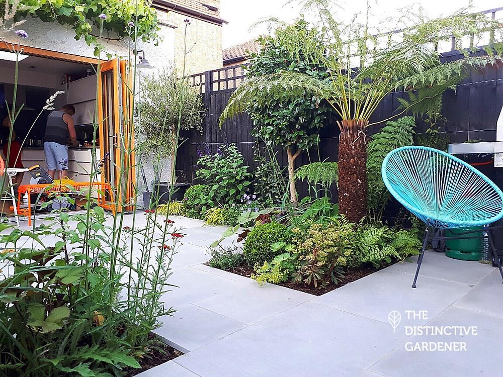 Montague road kitchen garden