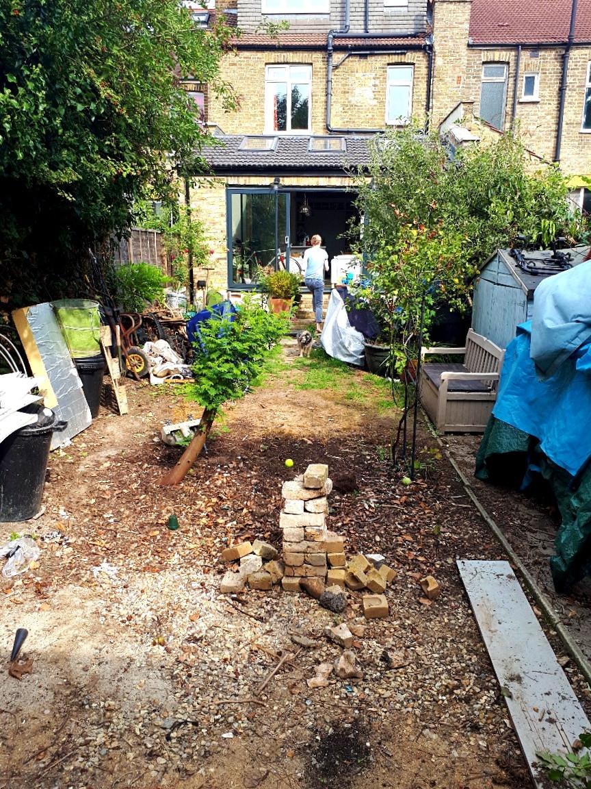 The back garden before