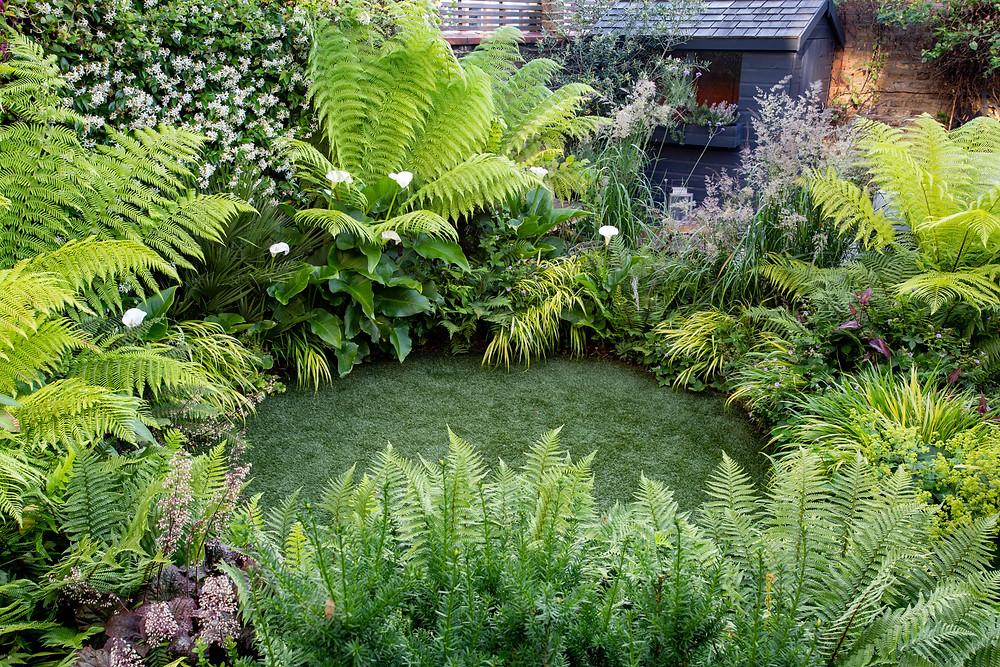 Circular lawn with mature borders