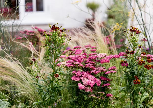 gallery-ludlow-road-flowers-in-raised-be