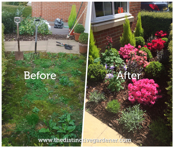 12 hour garden makeover before & after