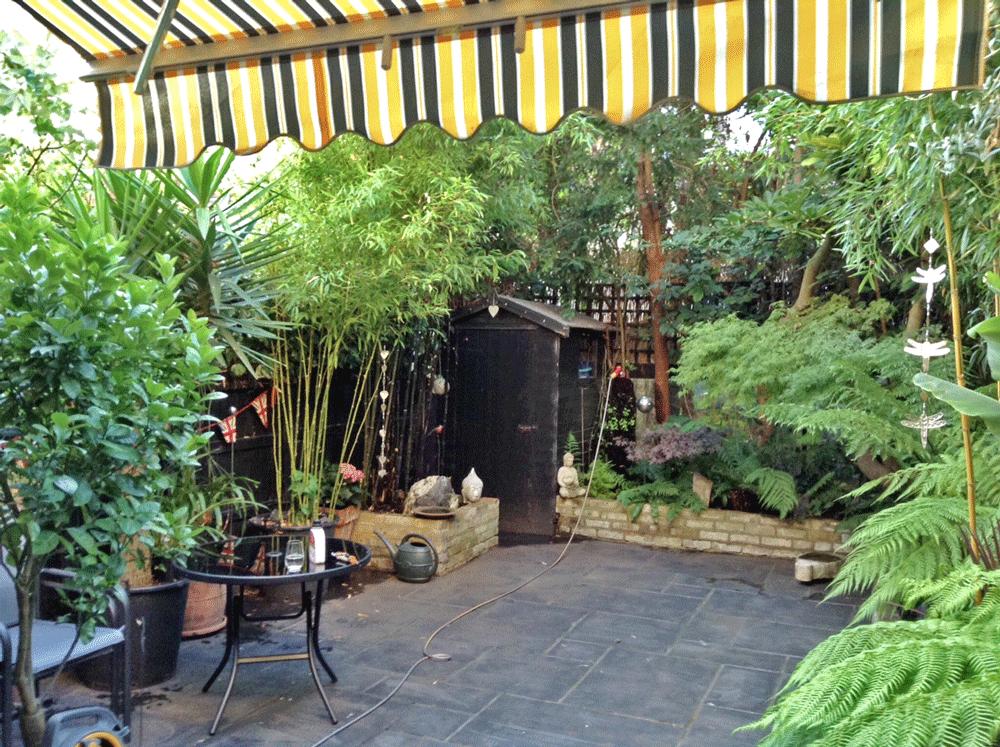 Kingstown Avenue garden after transformation