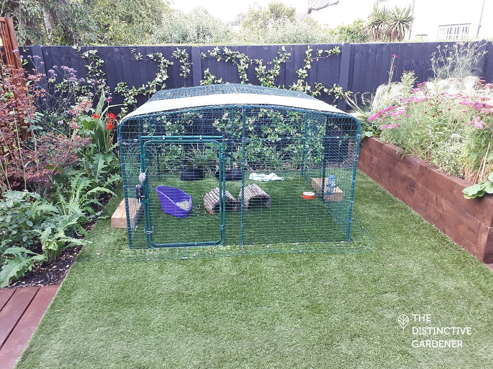 Rabbit hutch on the artificial lawn