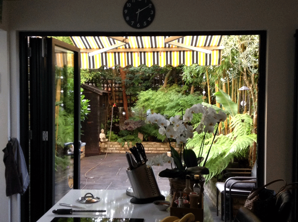 Kingstown Avenue garden view from the kitchen
