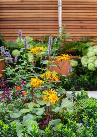 city-garden-acton-lane-main-bed-to-rea