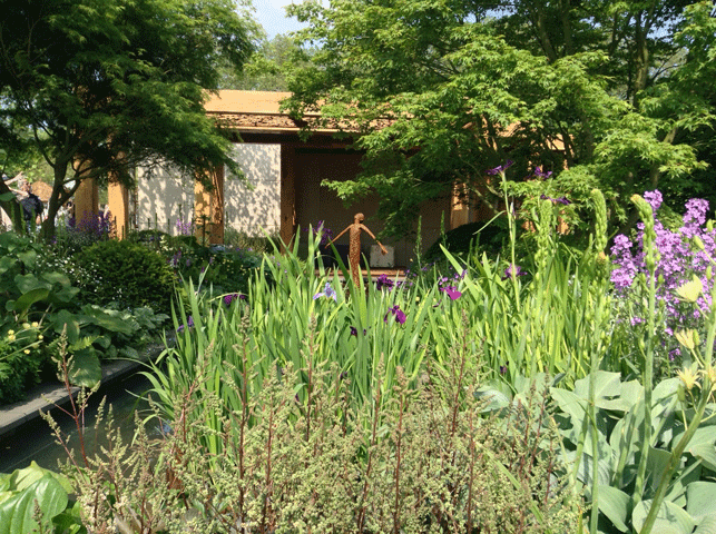 Chelsea Flower Show 2016: Great Ormond Street garden by Chris Beardshaw