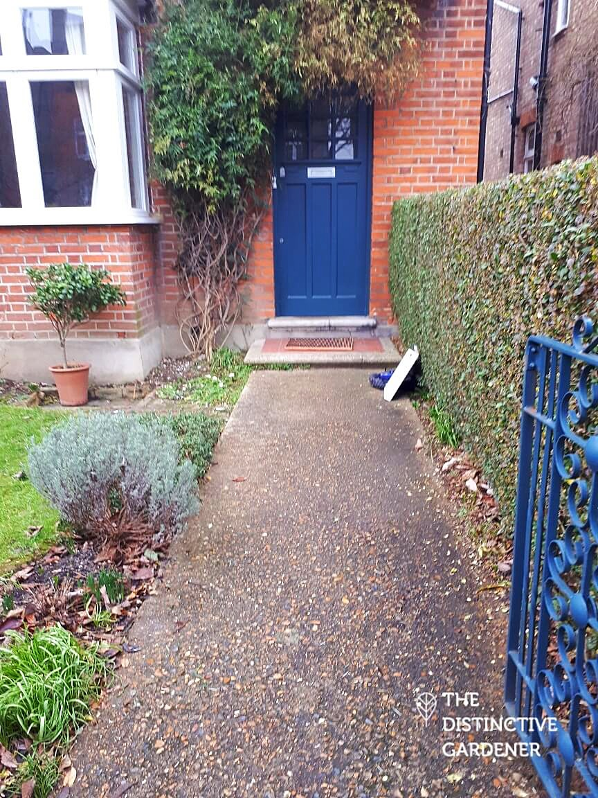 The concrete path to the door