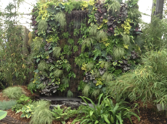 Chelsea Flower Show 2016: The Living Wall