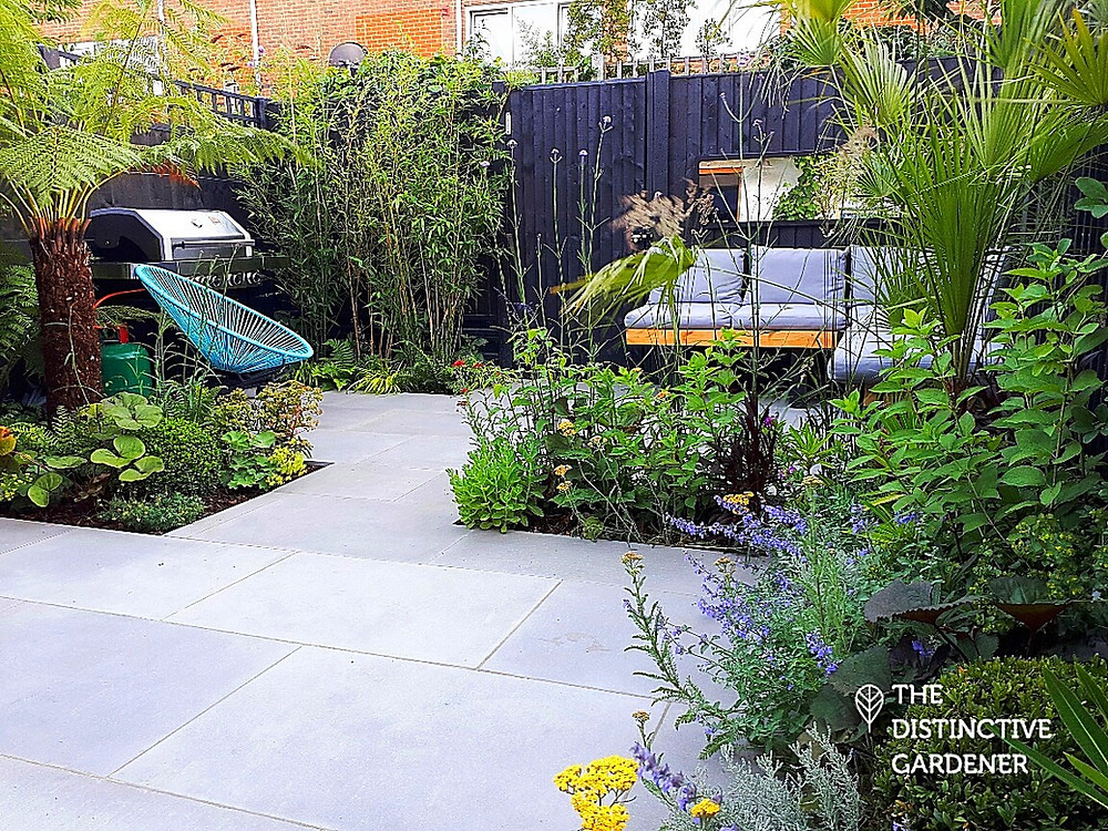Montague Road garden after transformation