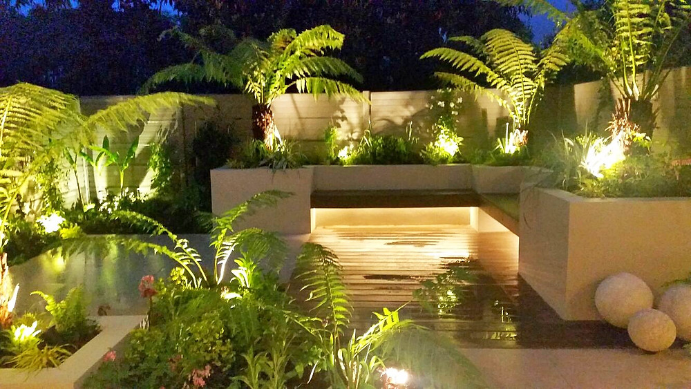 Clovelly Road Garden at night, with lighting features and ferns