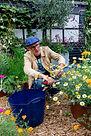 Nick at work, pruning in his garden